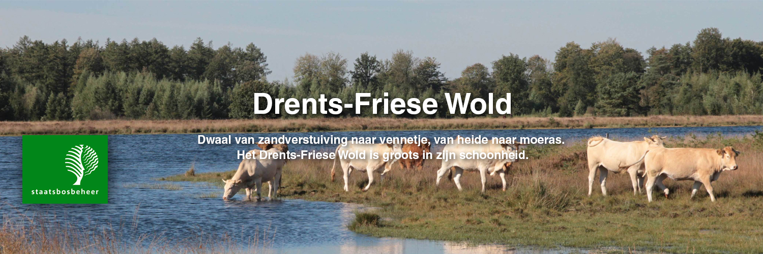 Buitencentra Drents-Friese Wold in omgeving Appelscha,