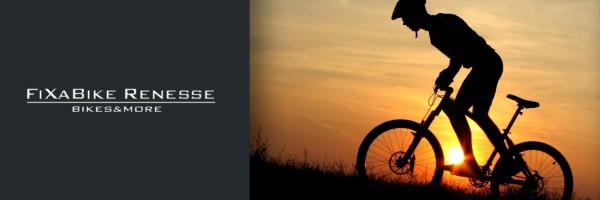 Fixabike in omgeving Renesse