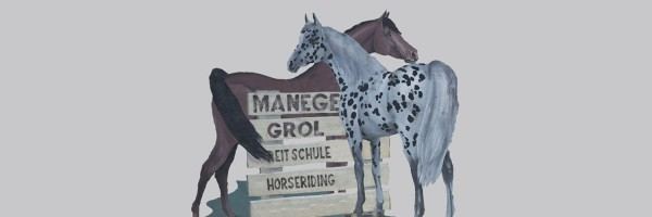 Manege Grol in omgeving Renesse