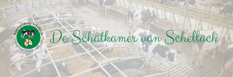 Kaasboerderij Schellach in omgeving Middelburg, Zeeland