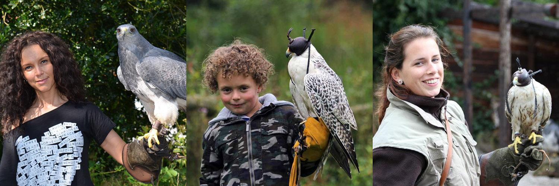 Falconcrest in omgeving Eindhoven, Noord Brabant