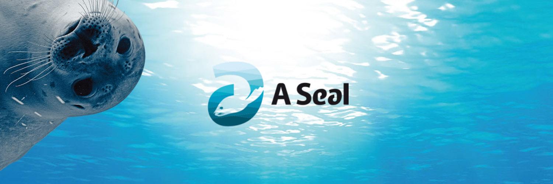 A Seal in omgeving Stellendam, Zuid Holland